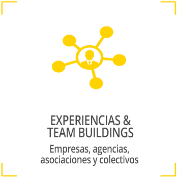 Experiencias y Team Buildings
