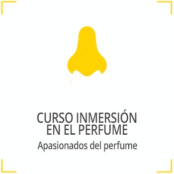 curso inmersión en el perfume