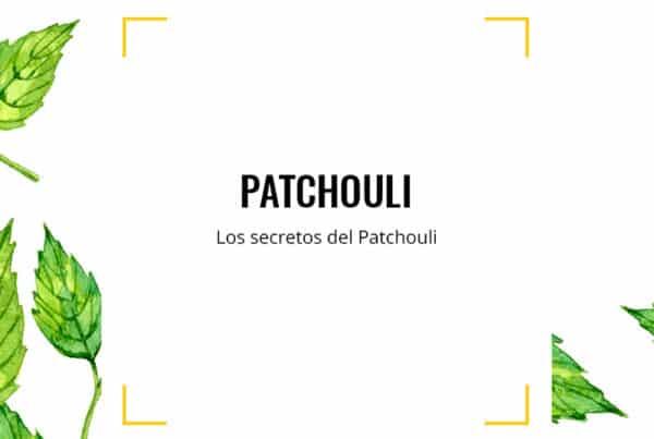Los secretos de Patchouli